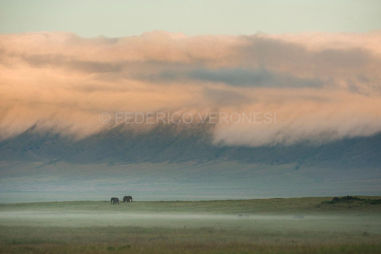 gallery-maasai-wanderings-safari-itineraries-signature-photo-safaris-africa-elephants-landscape