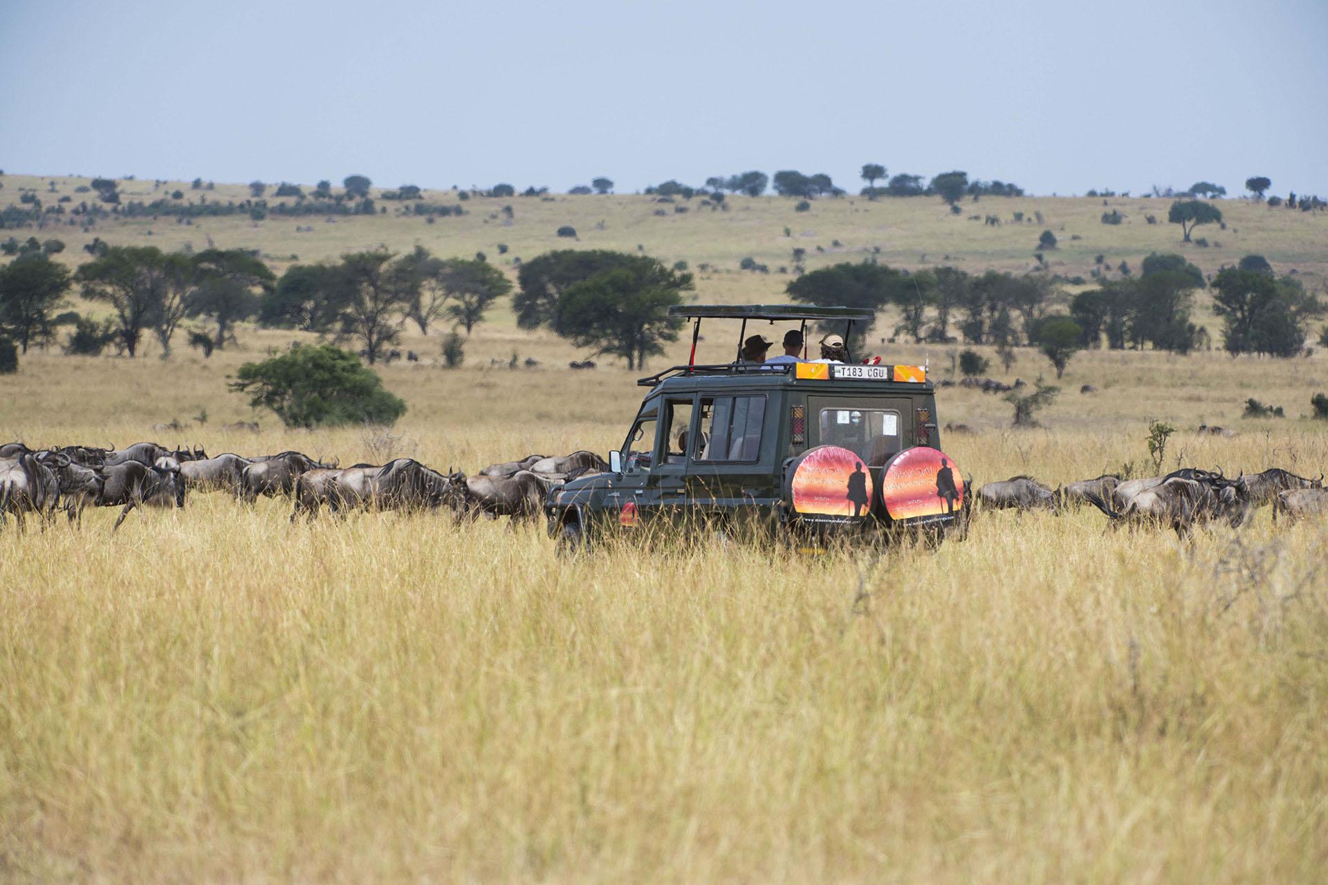 gallery-maasai-wanderings-safari-itineraries-signature-photo-safaris-africa