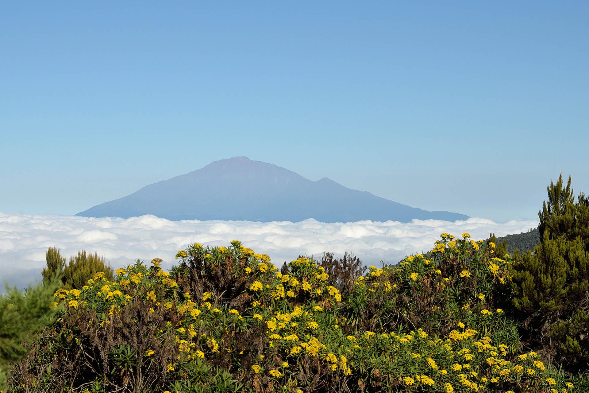 machame-scheduled-departure-mt-kilimanjaro-trekking-itineraries-maasai-wanderings-tanzania-africa